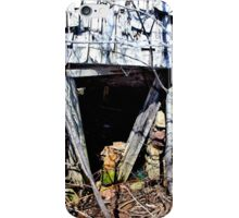 The Old Root Cellar  iPhone Case/Skin