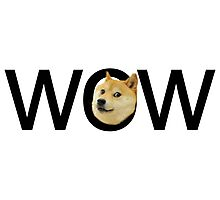 WOW Doge Photographic Print