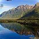 Mirror Lake by Barbara  Brown