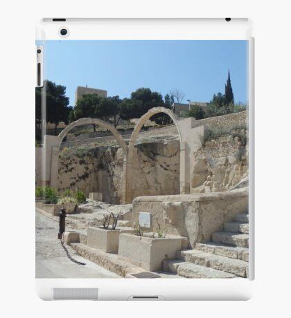 Castle Santa Barbara Complex iPad Case/Skin