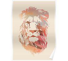 Desert lion Poster