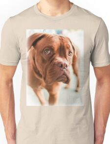 Doggy dog  Unisex T-Shirt