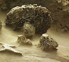 Mycological Geological by LydiaBlonde