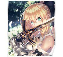 Saber Lily Close up Portrait Poster