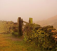 Dry Stone by Epicurian