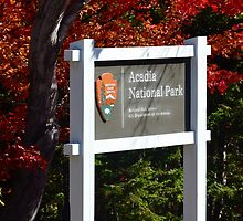 Cadillac Entrance Sign, Fall in Acadia by Dan Hatch