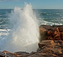 Thunder Hole Booming, Acadia National Park, Maine by Dan Hatch