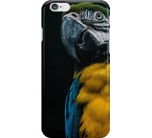 blue and yellow Macaw iPhone Case/Skin