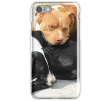 Sleeping Dogs iPhone Case/Skin