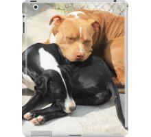 Sleeping Dogs iPad Case/Skin