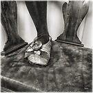 The Slipper  by ArtbyDigman