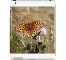 Summer serenity iPad Case/Skin