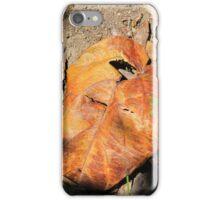 Colorful Leaf iPhone Case/Skin