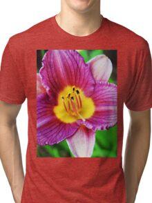 Little Grapette Tri-blend T-Shirt