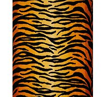 Animal Print 2 Photographic Print