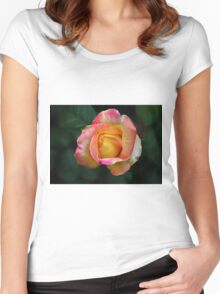 Blooming Rose Women's Fitted Scoop T-Shirt