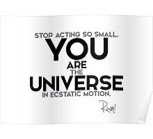 you are the universe - rumi Poster