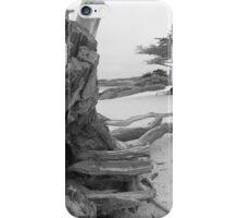 Sea Bones iPhone Case/Skin