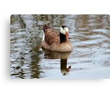 Mirror In The Lake Canvas Print