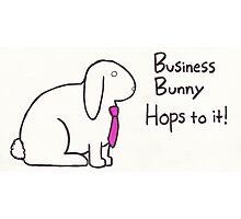 Business Bunny Photographic Print
