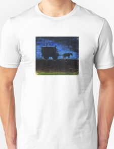 Carriage at sunset Unisex T-Shirt