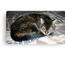 RIP Zoe the Wondercat Canvas Print
