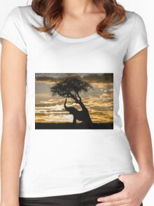 Elephant - Africa (7) Women's Fitted Scoop T-Shirt