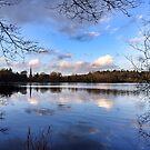 Hillsborough Park Lake by Ludwig Wagner