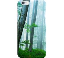 Obstacles iPhone Case/Skin