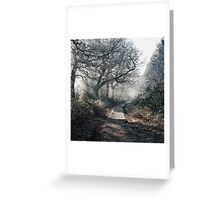 Rays of sunlight on a frost covered track through misty woodland. Norfolk, UK. Greeting Card