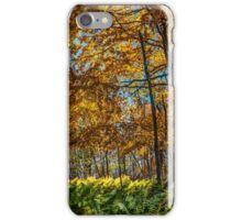Fern Light iPhone Case/Skin