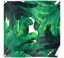 tropic green  Poster