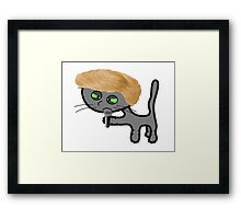 Mad Cat Is Upset Again Framed Print