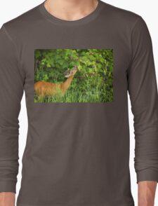 Deer Nibbling Wildflowers Long Sleeve T-Shirt