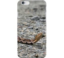 there's a snake on my road iPhone Case/Skin