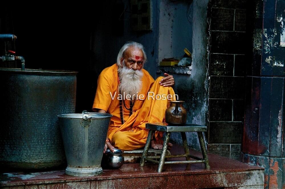 Delhi Spirit by Valerie Rosen