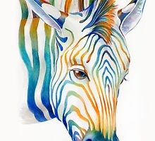 Zebra by Brandon Keehner