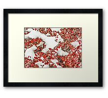 Leaves in the Snow Framed Print
