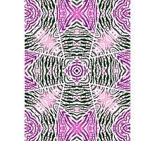 Pink Green Zebra Pattern  Photographic Print