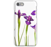 Purple Irises Flowers Isolated on White Background Iris Flower iPhone Case/Skin