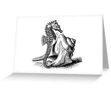 Seahorse Trumpet Shell Seashells Seahorses Black White Illustration Greeting Card