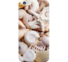 White Tropical Seashell Brown Shells Photograph Background iPhone Case/Skin