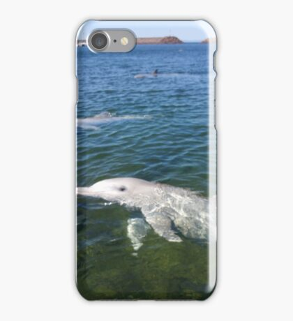 whyalla dolphins iPhone Case/Skin