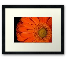 Allow and Empower Framed Print