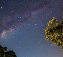 Gums under the Milky Way Sticker