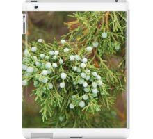 Juniper Berries iPad Case/Skin