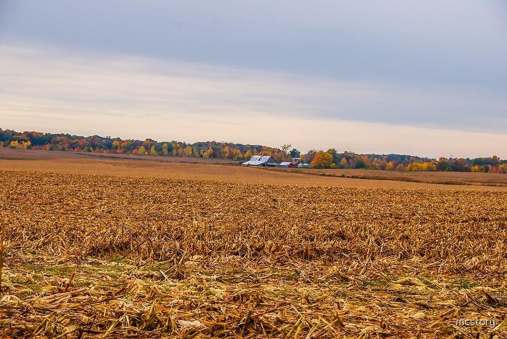 Autumn On An Indiana Farm by Mary Carol Story