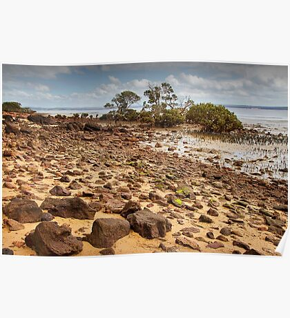 Rocky Beach - Tenby Point Poster