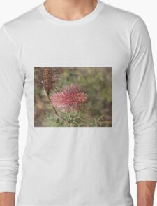 A Paradox of a Grevillea Long Sleeve T-Shirt