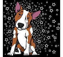 Starry English Bull Terrier Red and White Photographic Print